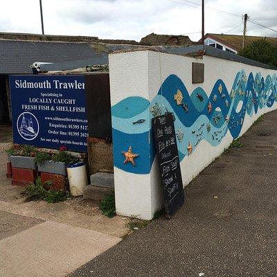 Sidmouth Trawlers