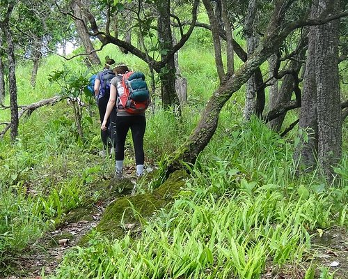 Hiking & Camping Tours By Coconuts tours Chiang rai Thailand