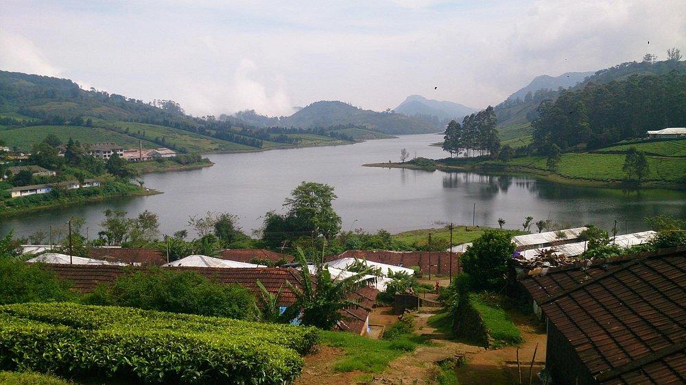 Megamalai scenic view