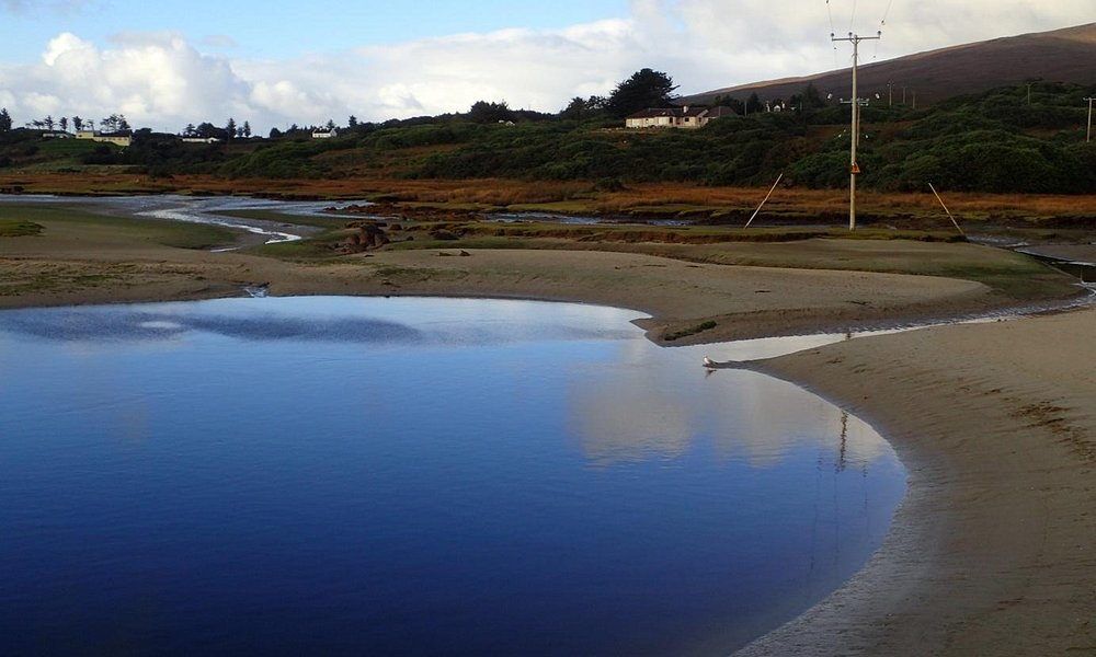 salt water marsh mulranny low tide. Taked from 100 old causeway.