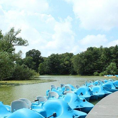 Boating at Lakeside