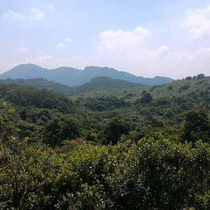 Ma On Shan Country Trail