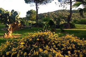 Тоскана, парк Маремма
