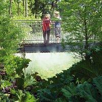 le moulin de la Blies - jardin des faïenciers