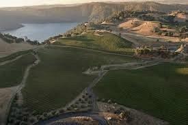 Renner Vineyard produces elegant wines