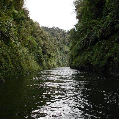 Whanganui River, New Zealand