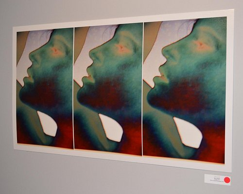 Forestvale Design Centre Gallery 'dreamz' exhibition