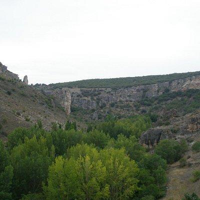 Pelegrina