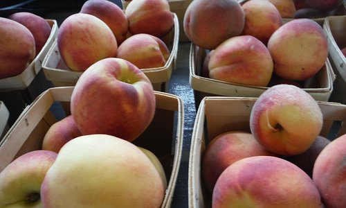 Farm fresh peaches!