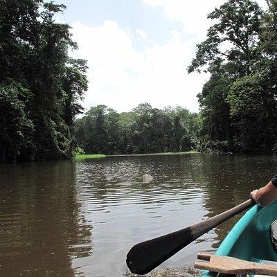 Tour en kayak por los canales