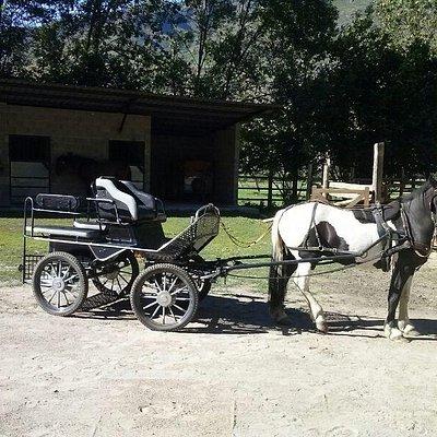 Carruaje Cavalls xic