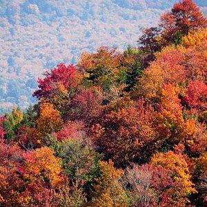 McCauley Mountain View