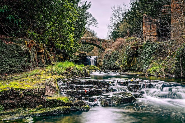 Jesmond Dene. A photographers dream. Unbelievably in the middle of a bustling city.
