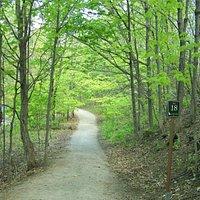 Les km sur les sentiers pédestres sont bien identifiés, Parc Chauveau