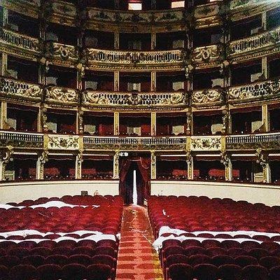 Platea Teatro Bellini