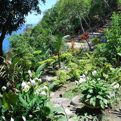 Parte da horta e flores com vista para o mar no Parque Ecológico Sitiê.