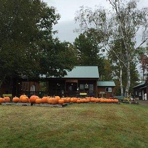 Windy Ridge Orchard September 29,2015.