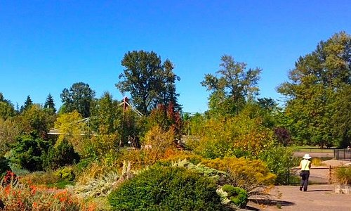 Alpine garden in Alton Baker Park (DeFazio Footbridge in the distance)