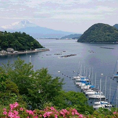 駿河湾と富士山の眺望