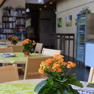 Cafe Vakka in the Koli Nature Centre Ukko