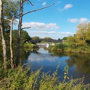 Upton Ham Nature Reserve view
