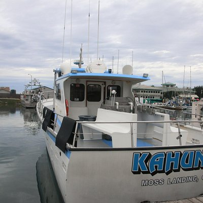 Join us aboard the 50 foot Kahuna.  We make sure there is plenty of room for maxium viewing