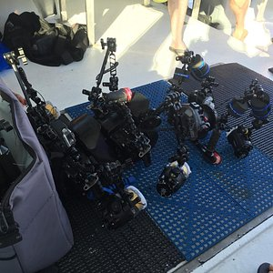 Adequate accommodations for camera gear