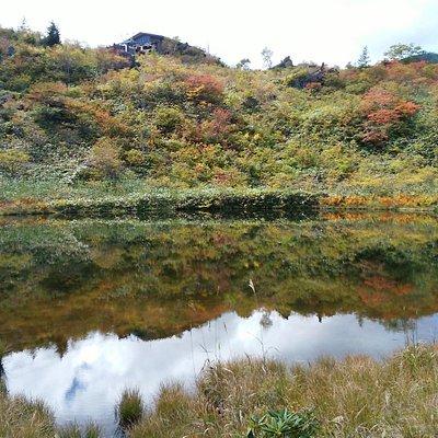 池の周りが散策コース