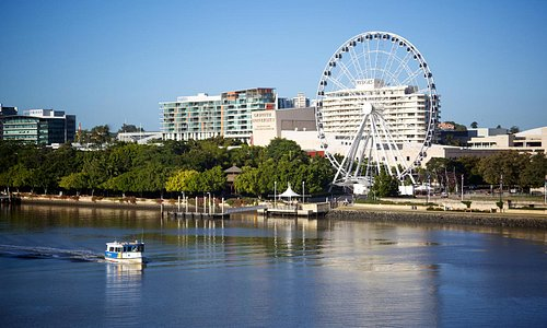 A typical day in Brisbane - blue skies and sunshine!