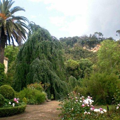 Giardino ottocentesco