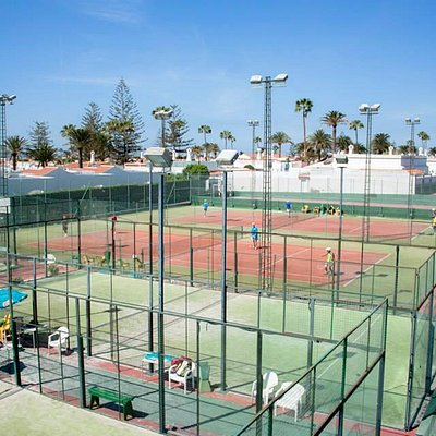 Tenis Holycan