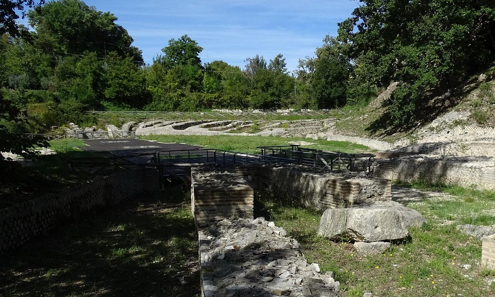 panoramica dell'arena