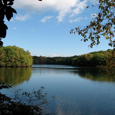 Tranquil view of Miller's Pond