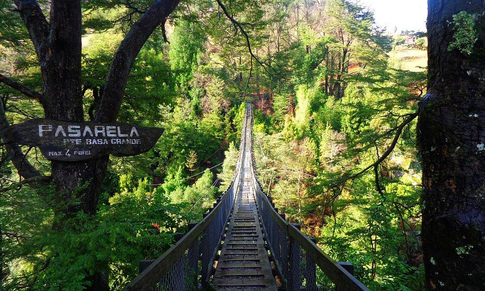 Camino de Curarrahue a Reigolil, visita una de las pasarelas más altas de Chile. Imperdible!