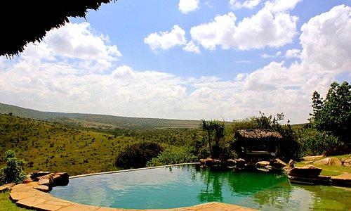 Pool at Borana Lodge