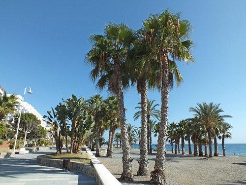 Playa de San Cristobal