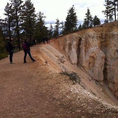 Rim Trail-Bryce Canyon National Park