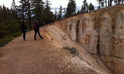 Rim Trail-Bryce Canyon National Park