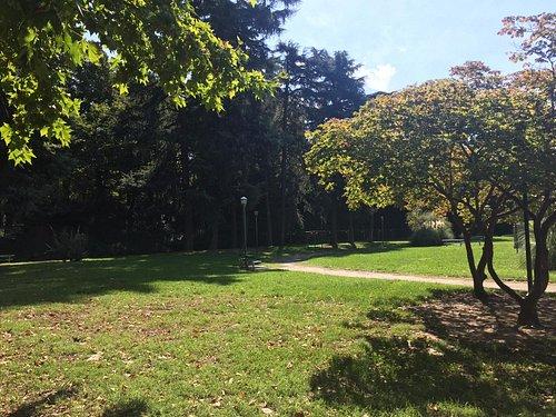 Parco Allea