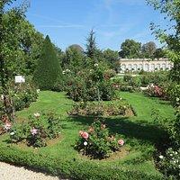 jardin de bagatelle roseto