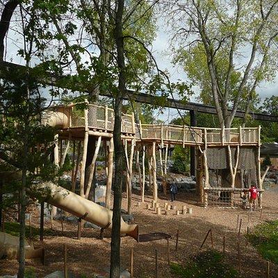 Wild Woods play area