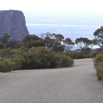 Mt William track