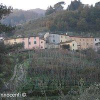 Panorama di Celle dei Puccini