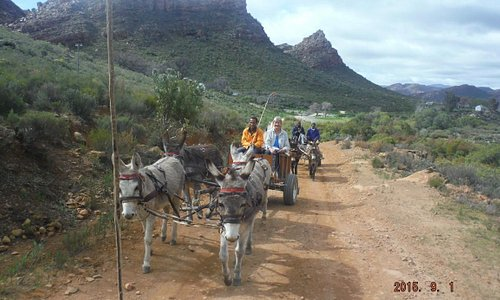 Donkey carts loaded with hikers' luggage