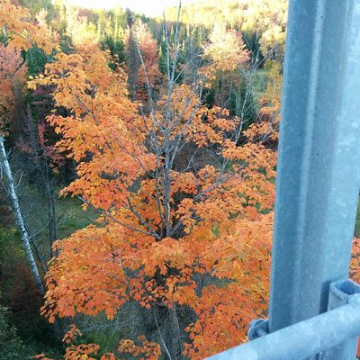 Fort Creek Hub Trail October 2014