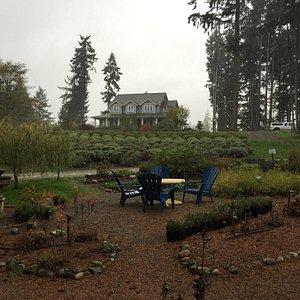 Rainy fall day at Danali