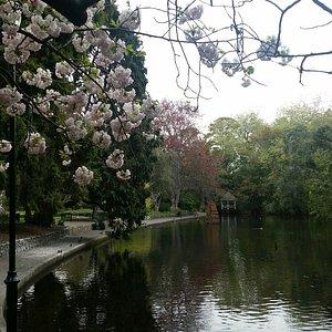 A truly wonderful gardens