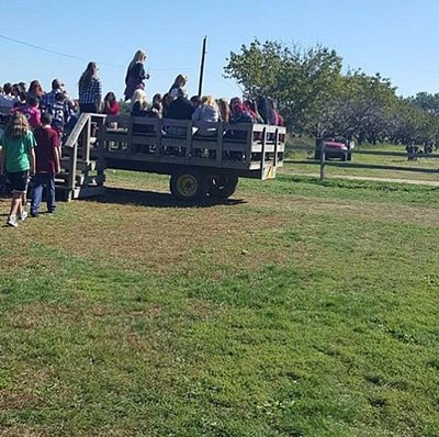 Hay ride to Orchard