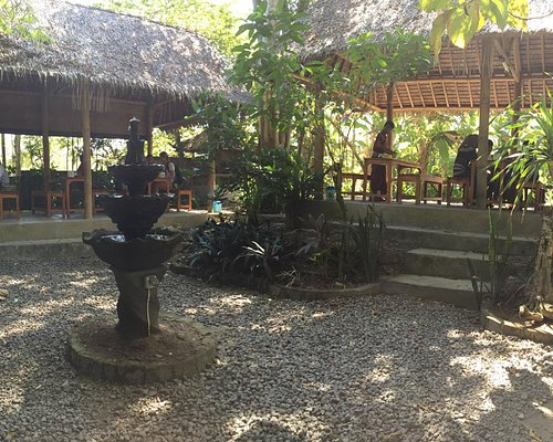 Nice luwak coffee and place. Its great !!