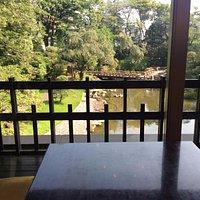 カフェからの景色